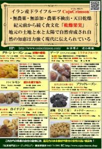 ドライフルーツ 特徴ポップ 6種類 A5 チラシ.pdf 写真JPG